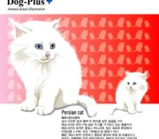 可爱动物  猫图片