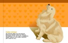 可爱动物,十二生肖,狗图片