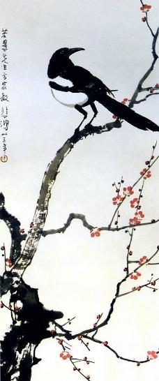红眉喜鹊图片