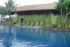 巴厘岛光景图片