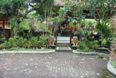 巴厘岛风景之五图片