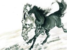 马的画图片
