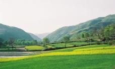 山中田园图片