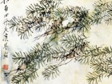 花鸟水族图C图片