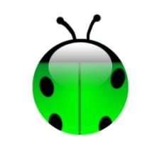 很可愛的瓢蟲圖片