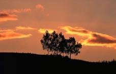 黄昏夜景图片