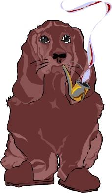 常见动物漫画1043