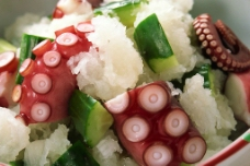 墨鱼拌黄瓜沙拉图片