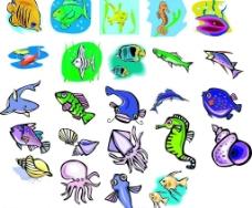海洋生物150图片