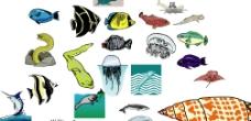 海洋生物664图片