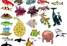 海洋生物636图片