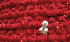 精美毛熊玩具图片