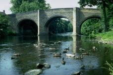 桥的主题0043