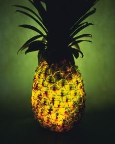 神奇的水果0084