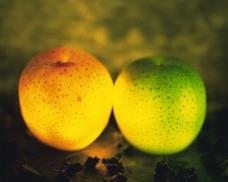 神奇的水果0020