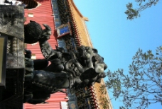 雍和宫 狮子 园林图片