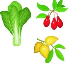 白菜、芒果、樱桃图片