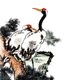 松树 仙鹤图片
