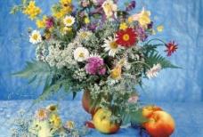 鲜花写真图片