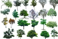 園林素材圖片