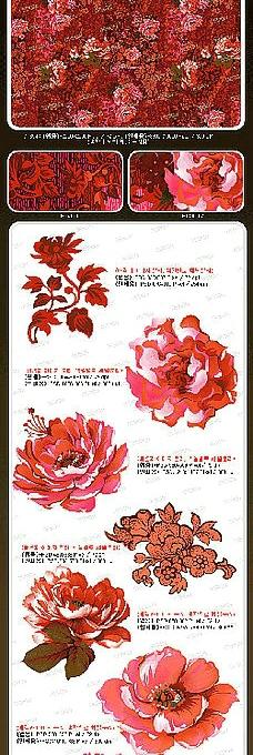 粉紅花卉花紋psd分層素材圖片